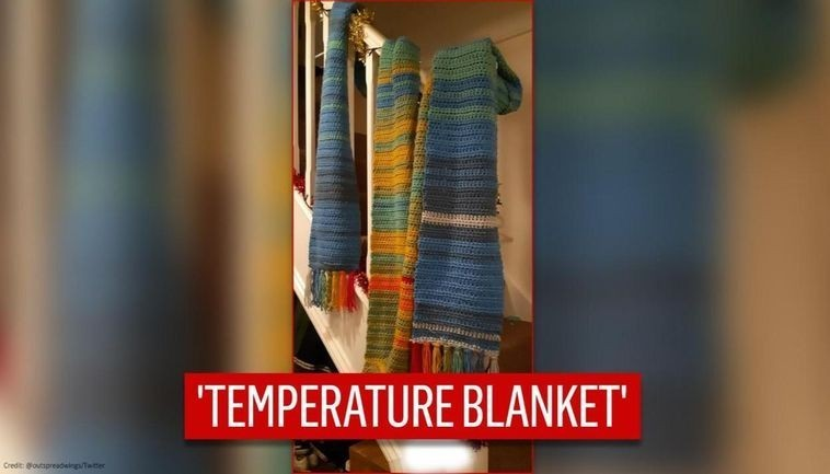 Temperature Blankets Getting Trending on Social Media by Netizens